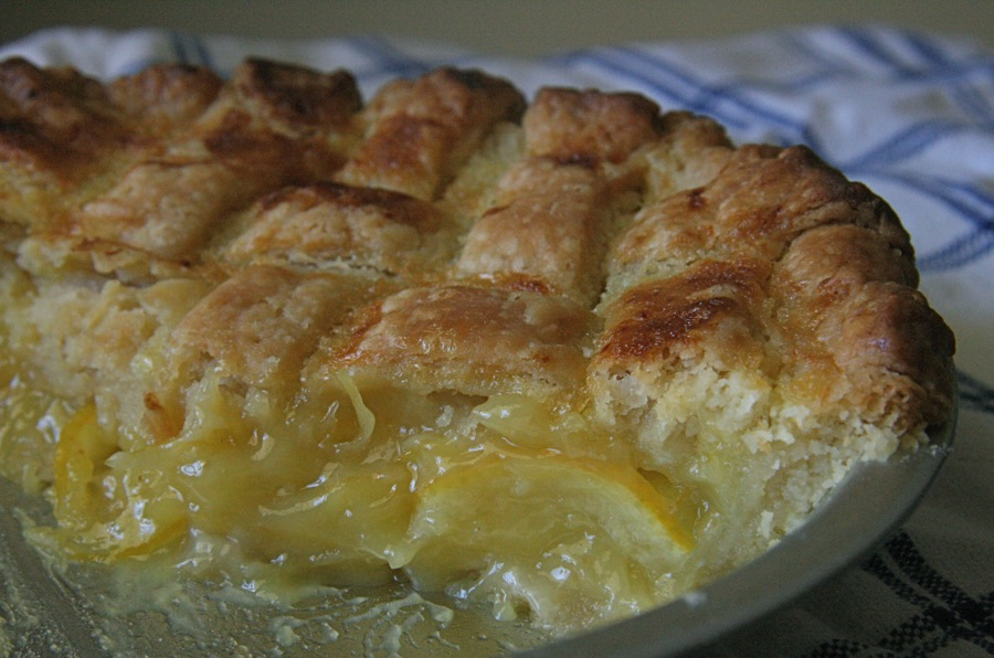 The Dogs Eat the Crumbs: Shaker Lemon Pie for Pi Day