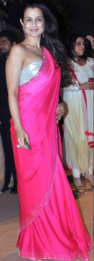 Ameesha Patel1 - HOT Pink Dress