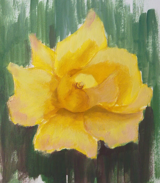 rosa amarilla resaltes en oscuro