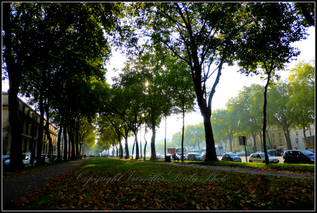 Avenue de Paris in Versailles