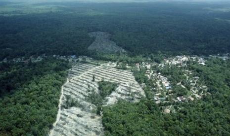 SIEJ-Burung Indonesia Akan Gelar Diskusi Restorasi Ekosistem Hutan Harapan