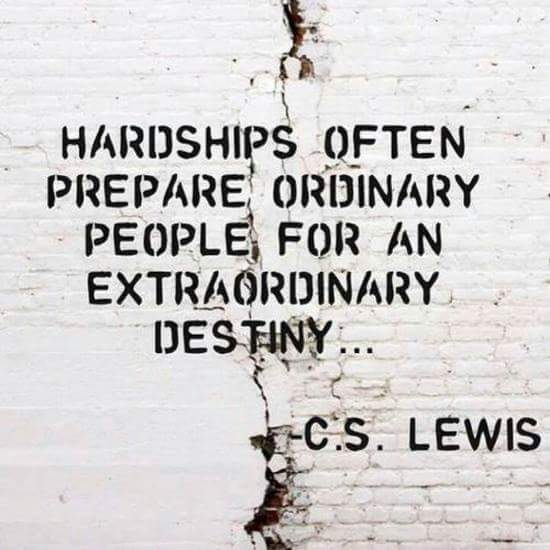 Hardship is a seasoning agent that make our lives better.