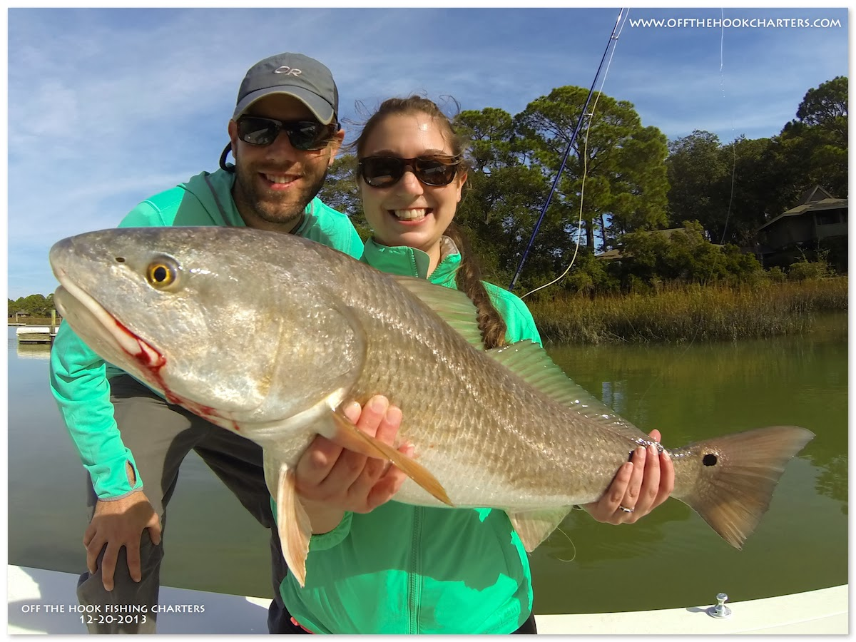What a dreamy december day for Hilton head island fishing