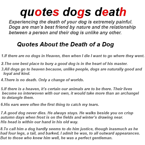60Betterof Quotes Dogs Death About Grieving And Loss Dog Quotations Beauteous Dog Loss Quotes
