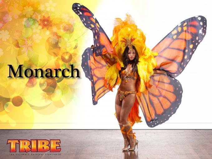 Giant Butterfly Wings Costume monarch butterfly wings