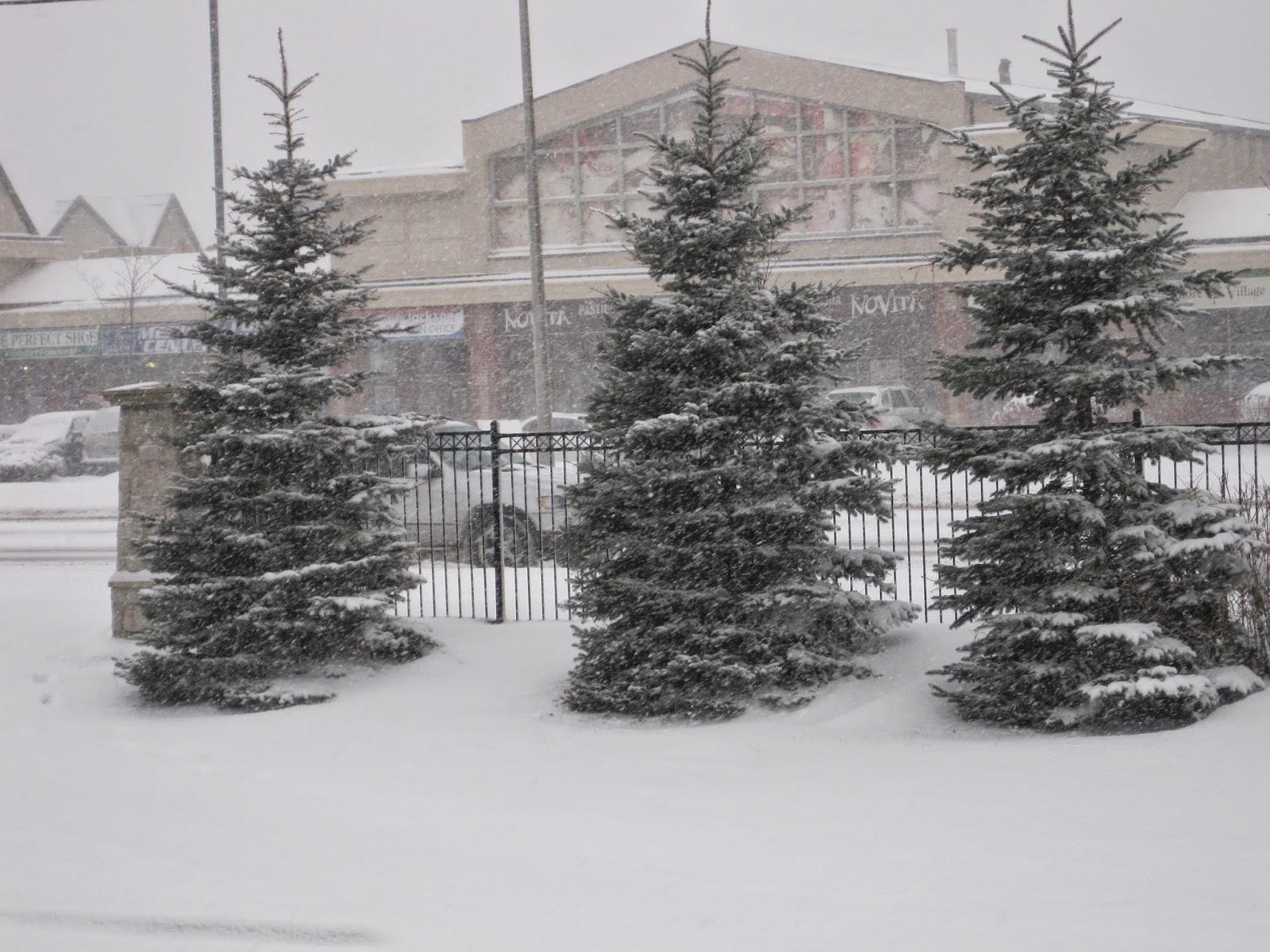En Sugantha Illam/ En Sugantha Illam/ Snow Fall
