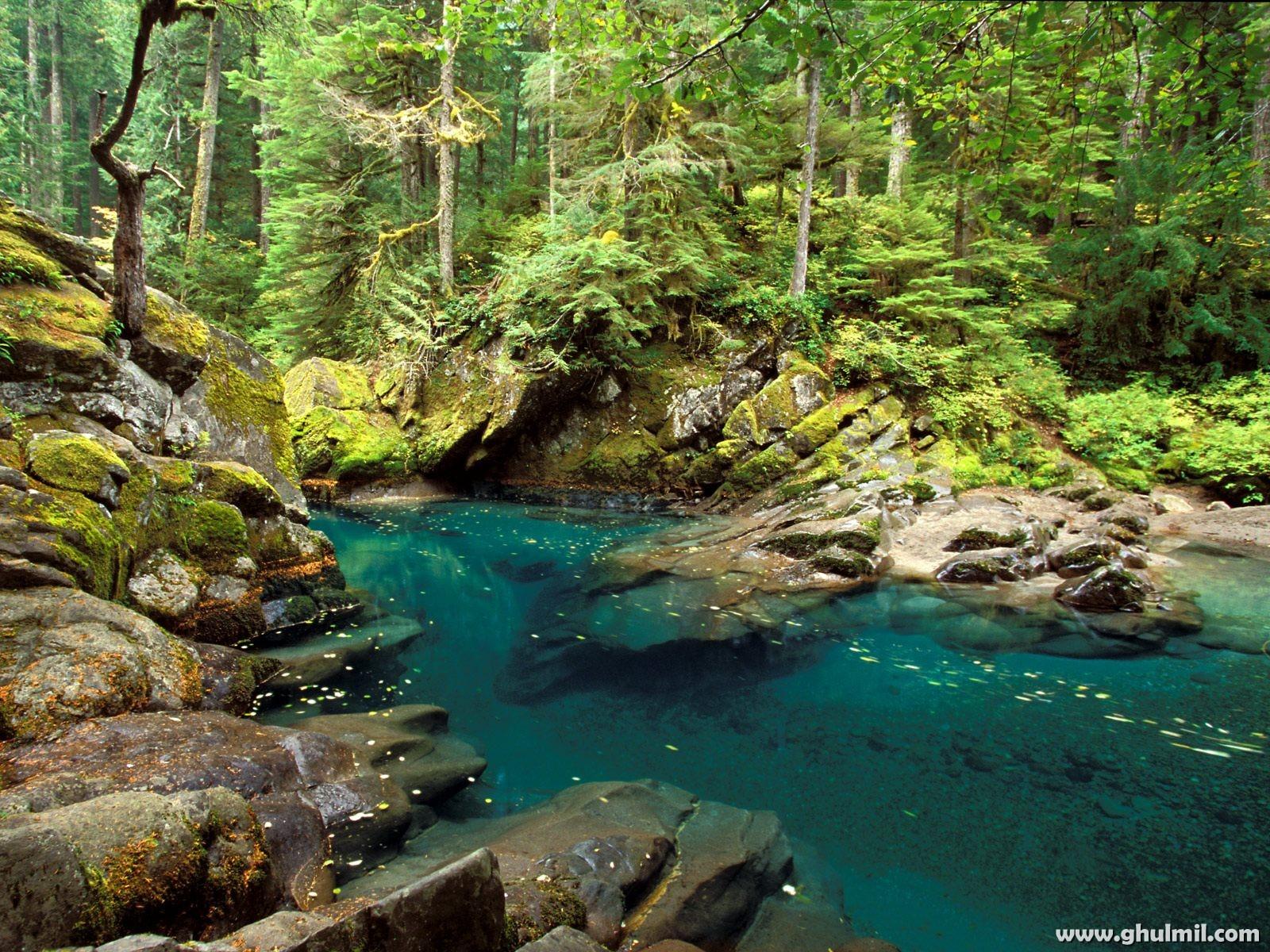 http://3.bp.blogspot.com/-3Ij0NWrktZA/TddjIJCwcsI/AAAAAAAAAFY/hLf29B7QXuE/s1600/7tural-scenery-or-blue-lake-wallpaper.jpg