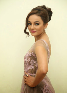 Seerat Kapoor Stills at Tiger Movie Audio Launch 4.jpg