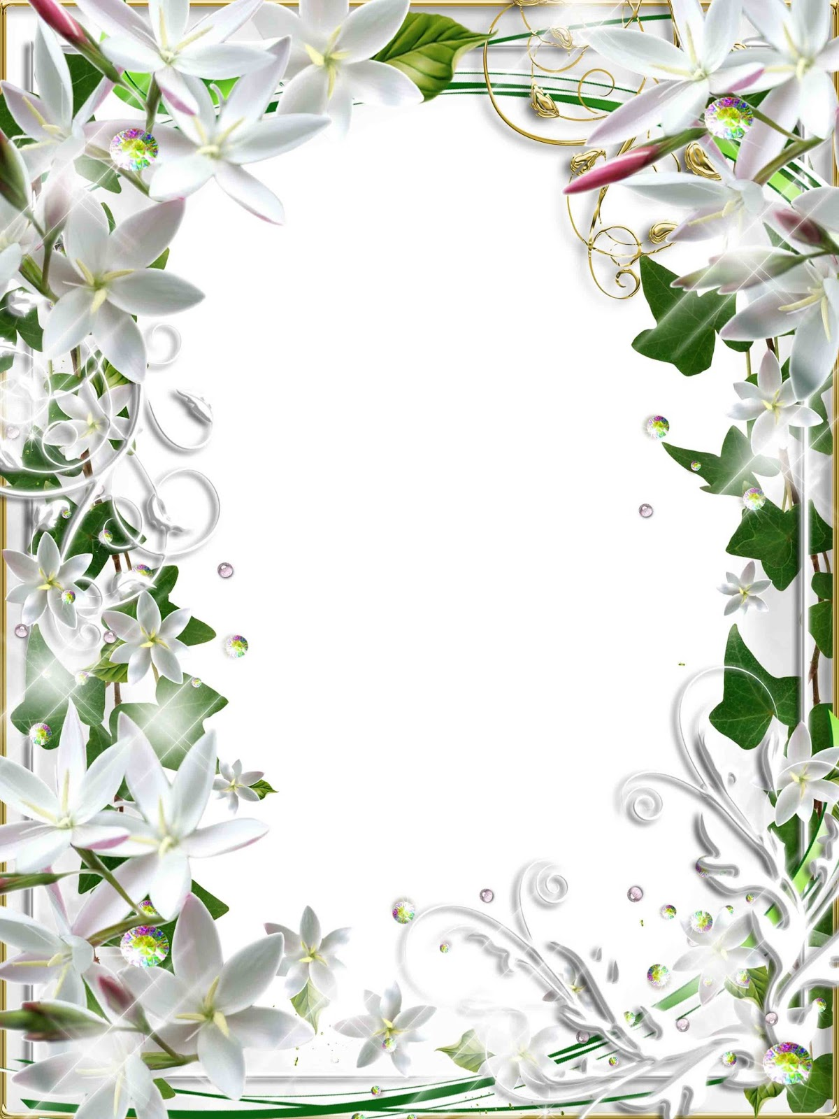 flower frame psd | psd frame