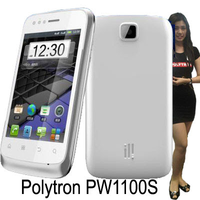 Polytron PW1100S