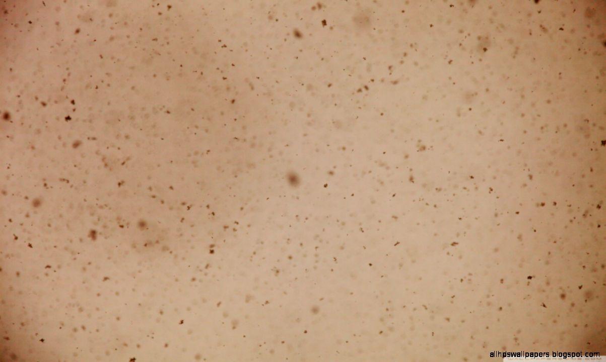 Snowflakes Sepia HD desktop wallpaper  High Definition
