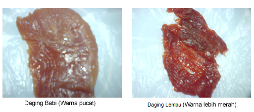 PENTING Beberapa Perbezaan Antara Daging Babi dan Lembu