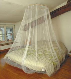 Como evitar picaduras de mosquitos el m dico en la casa - Mosquiteras para camas ...