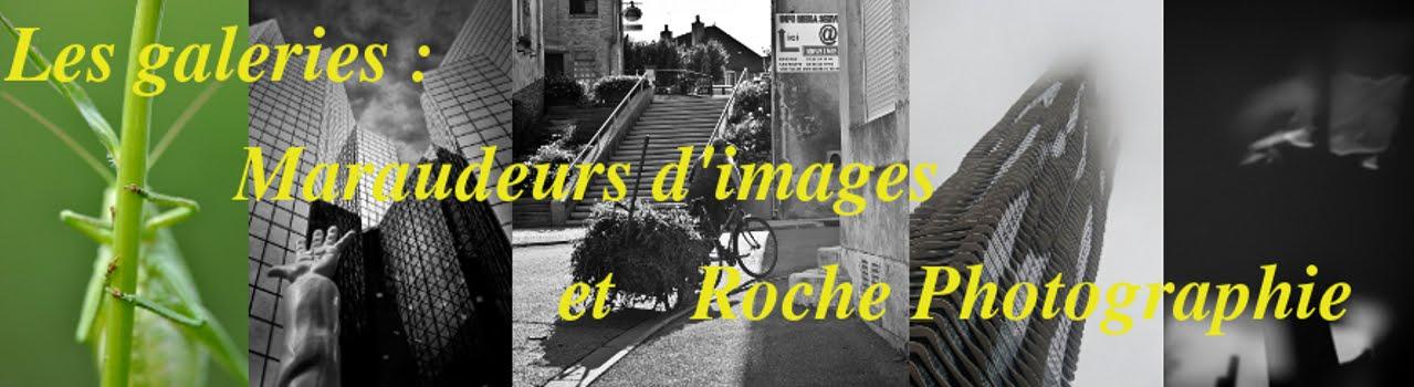 La Galerie des Maraudeurs d'images et de Roche Photographie