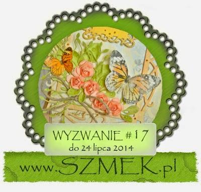 http://szmek-bloguje.blogspot.ie/2014/07/17-wyzwanie-u-szmeka.html
