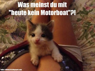 Katze auf Brüsten heute kein Motorboat