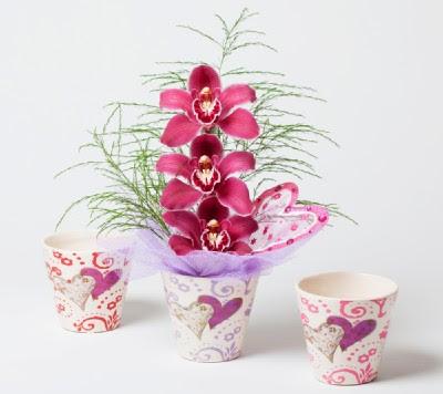 Gardenia f d martos - Tiestos para orquideas ...