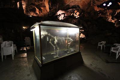 Grotta di Bossea, Salone dell'Orso