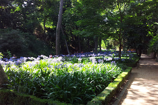 Shady gardens - Laberynth Park on Barcelona Sights Blog