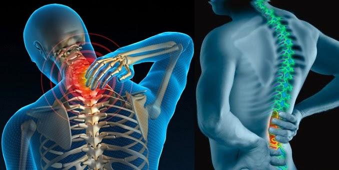 Đệm massage lưng hồng ngoại giảm đau, ghế mát xa chính hãng Nhật Bản, máy mát xa
