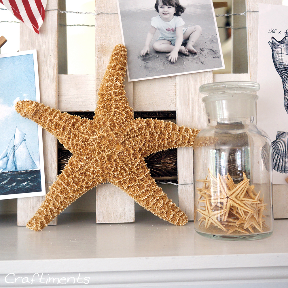 starfish in a jar