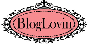 Segu el blog en bloglovin: