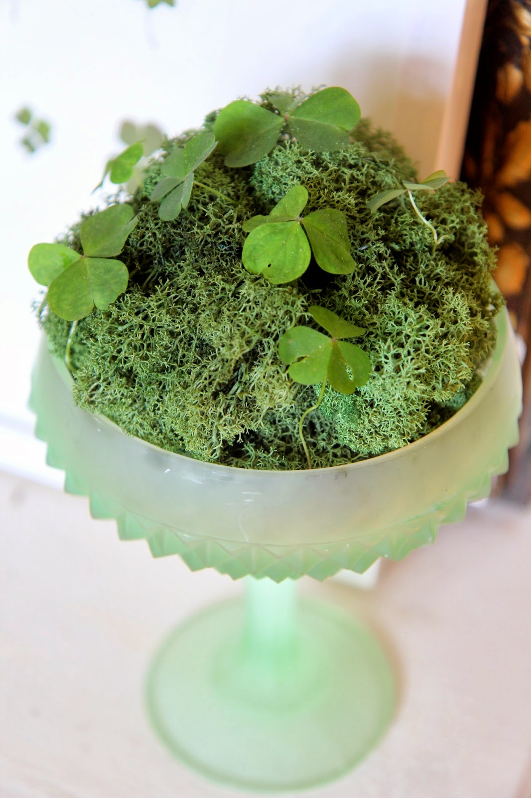 Green Compote and Shamrocks for St. Patrick's Day Decor
