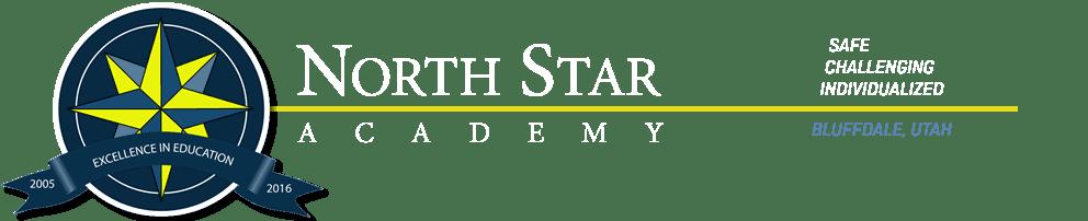 North Star Academy Cross Country Team