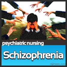 paranoid schizophrenia nursing care plan