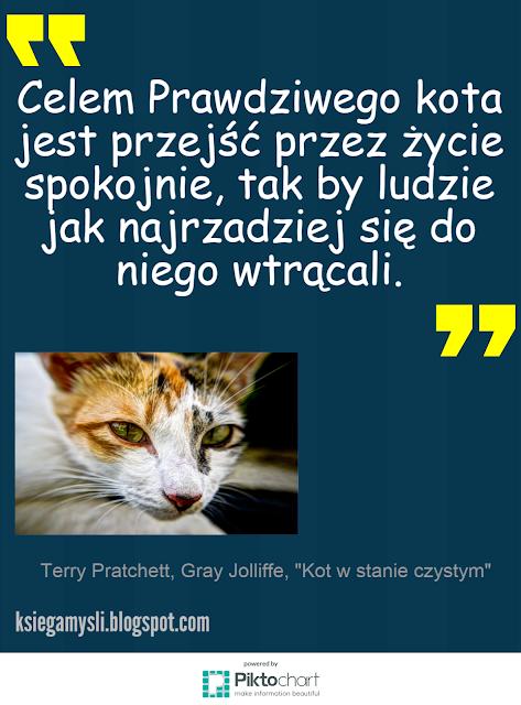 Celem prawdziwego kota jest przejść przez życie spokojnie, tak by ludzie jak najrzadziej się do niego wtrącali.