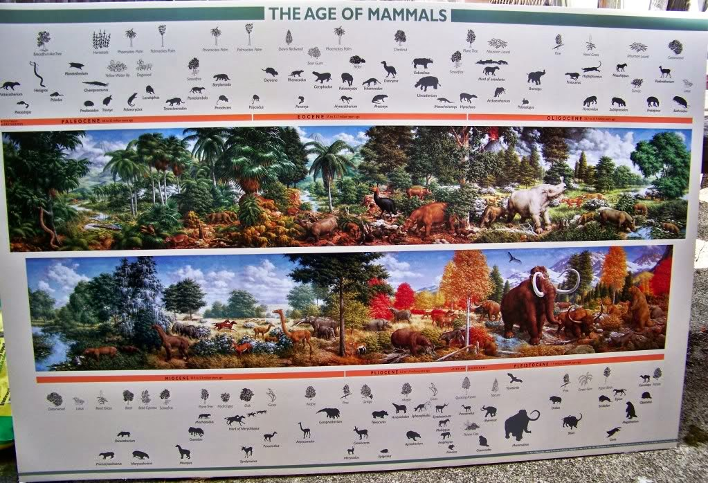 What happens when a non accredited paleontology fan blogs for Age of reptiles mural