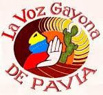 La Voz Gayona DE PAVIA