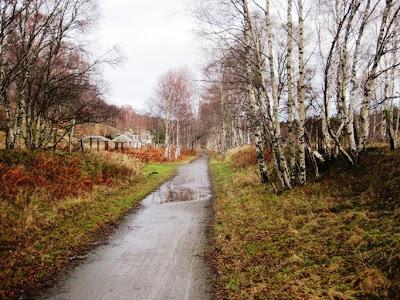 Walk along the Deeside Way through Cambus o'May