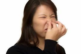 backblog: Fa puzza in bagno: accoltella il marito