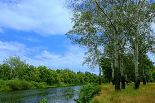 Поход на байдарках по реке ПСел