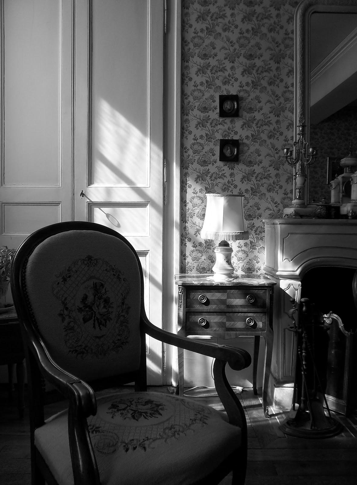 Sc ne d 39 int rieur le salon for Scene d interieur blois