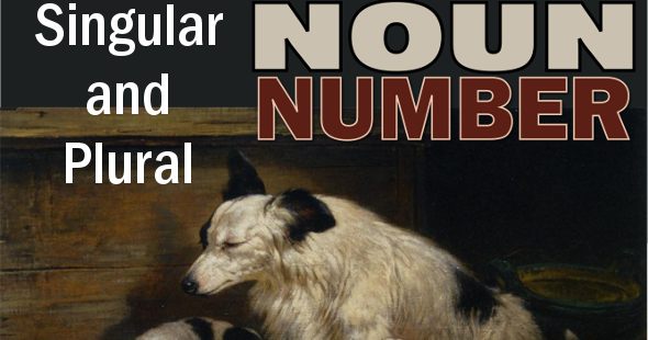 the number of the noun There are two numbers in noun-number: singular and plural 1 singular: when we speak about one person and one thing, we use the noun in singular form.