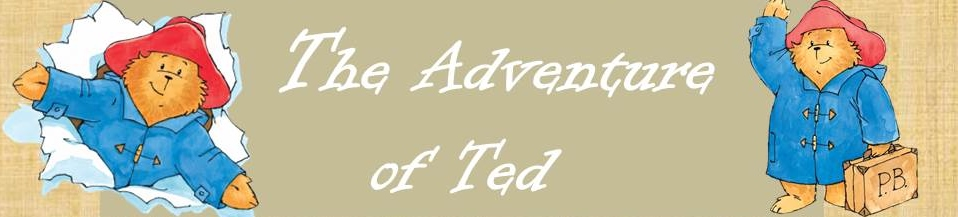 The journey of Ted