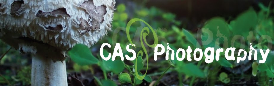 CAS Photography