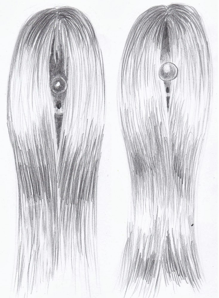 weekly doodles and tuts drawspace lesson h12 how to draw a long hair