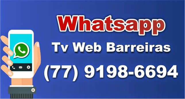 WHATSAPP TV WEB