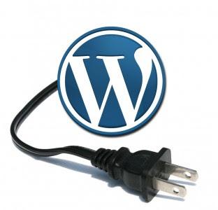 WordPress Logo With Plug Plugin Logo