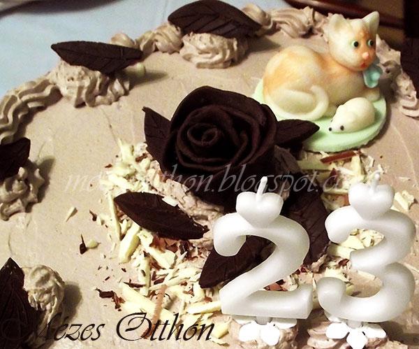 csokoládé rózsa és csokoládé levelek csokoládé gyurmából fotó