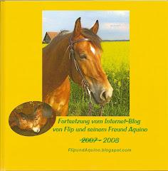 Blogbuch 2008: