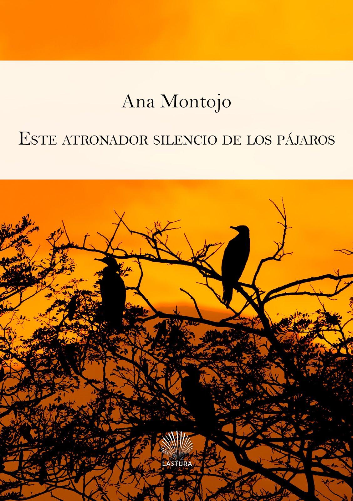 Este atronador silencio de los pájaros