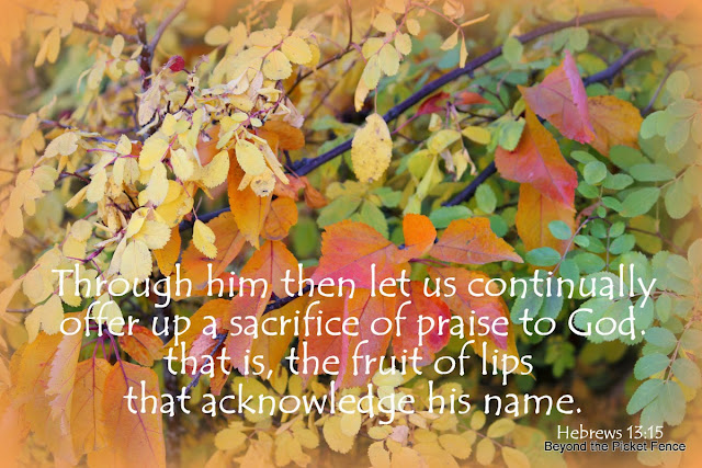 Sunday Verses God's Encouraging word http://bec4-beyondthepicketfence.blogspot.com/2013/10/sunday-verses_27.html