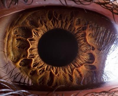 صور عيون تدمع, صور عيون الخرج