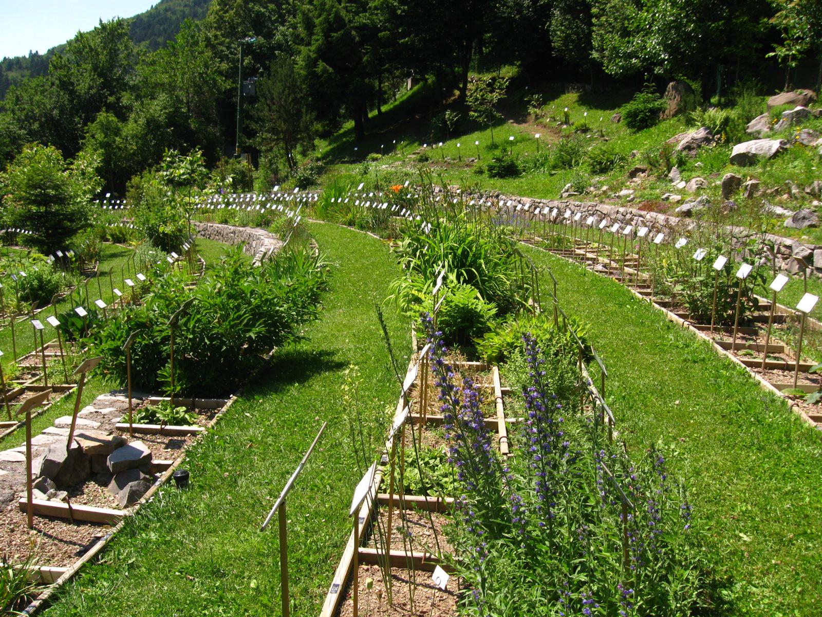 Centro ricerca piante officinali veneto giardini da - Terrazzamenti giardino ...