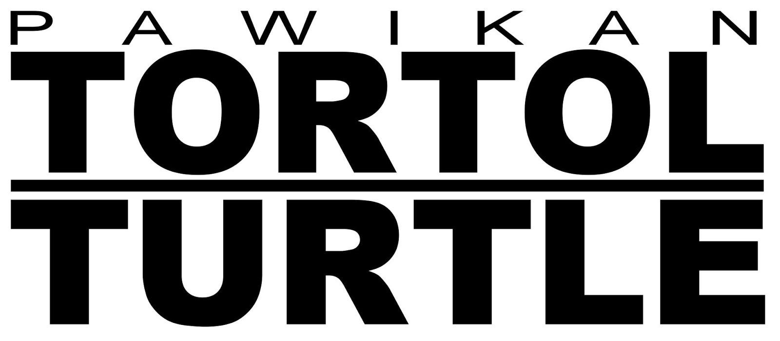 TORTOL TURTLE 2017