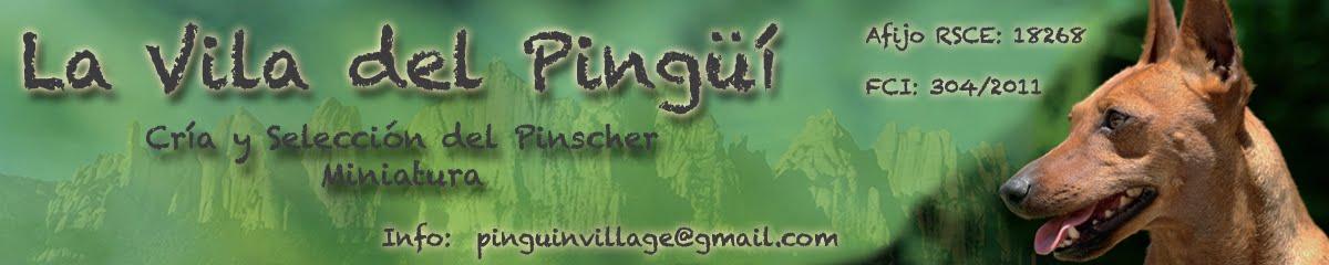 Pinguin Village │ LA VILA DEL PINGÜÍ │pinscher miniatura blog de mascotas